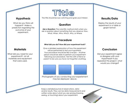 science fair project template science fair ideas for 8th grade myideasbedroom