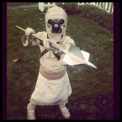kid  awesome tusken raider costume   equally