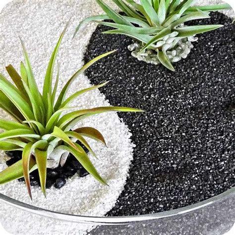 Yin Yang Garten by Yin Yang Black White Sand Glass Terrarium Zen Garden