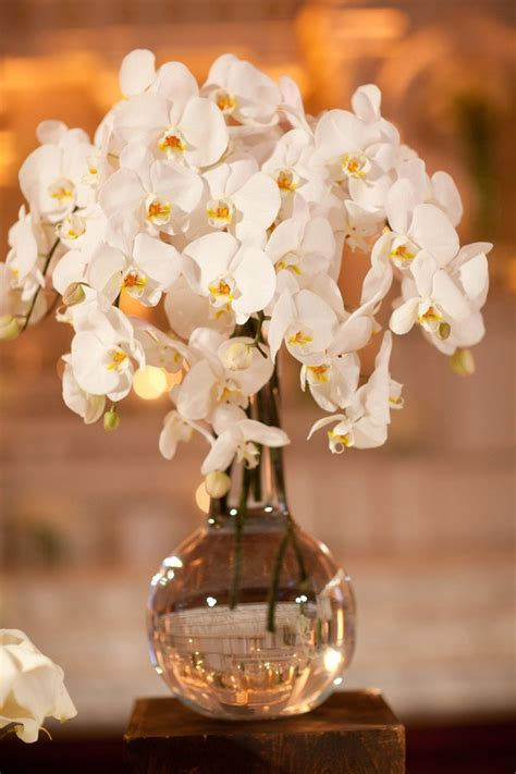 orchids wedding centerpieces 17 best ideas about orchid wedding centerpieces on wedding table decorations