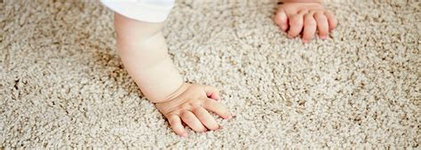 rug cleaning nyc carpet cleaning manhattan cleaning