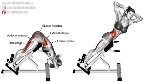 twisting hyperextension exercise guide  video weight