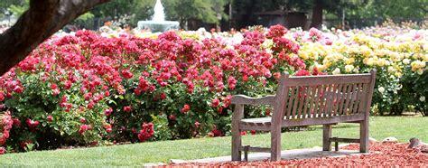 rose garden  wolff group