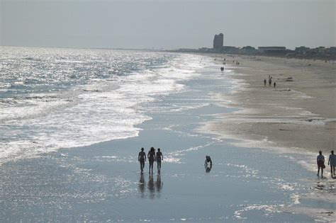 friendly beaches nc rentini pet friendly cottage isle nc