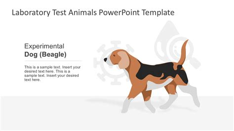 animal powerpoint templates laboratory test animals powerpoint template slidemodel