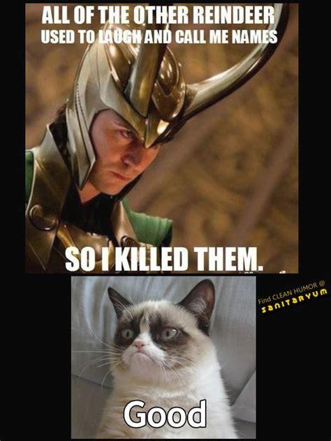 Grumpy Cat Meme Clean - 40 best images about grumpy cat on pinterest cold