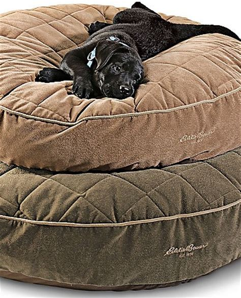 eddie bauer dog bed eddie bauer dog bed eddie bauer eddie bauer