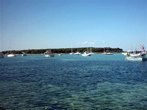 pesca porto cesareo pesca turismo porto cesareo nel salento
