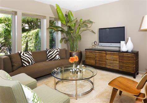 Incroyable Plantes Depolluantes Pour La Maison #1: Int%C3%A9rieur-de-la-maison-avec-des-plantes-d%C3%A9coratives-oiseau-g%C3%A9ant-de-paradis.jpg