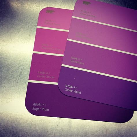 Buying purple paint samples for my bathroom candy violet