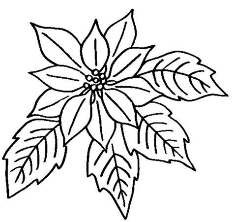 imagenes de nochebuenas navideñas para colorear baixar arquivos e imprimir flores para colorir p 225 ginas