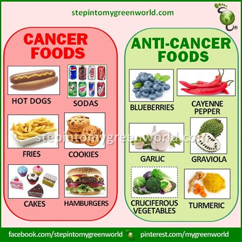cancer diet 104 best images about food for your health charts on health comment and