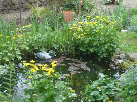 Garten Deko Paradies by Garten Garten Mein Paradies Zimmerschau