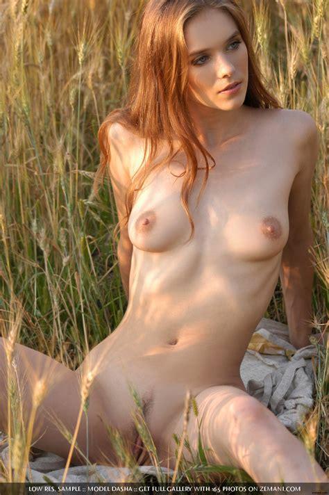 dasha Field Of Love