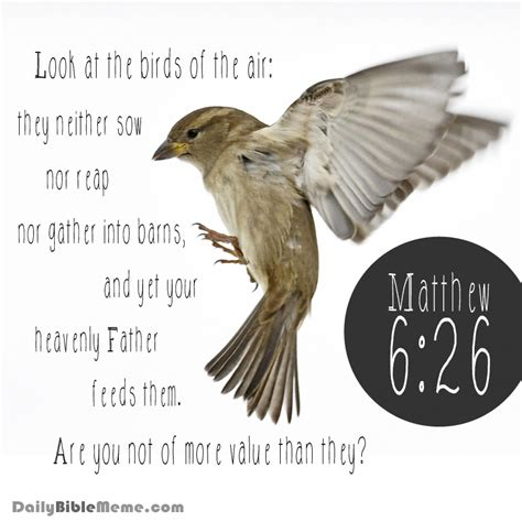 Daily Bible Meme - daily bible meme 28 images psalm daily bible meme