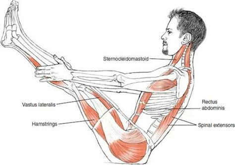 boat pose chakra benefits boat yoga pose cos hum 224 pinterest gesundheit