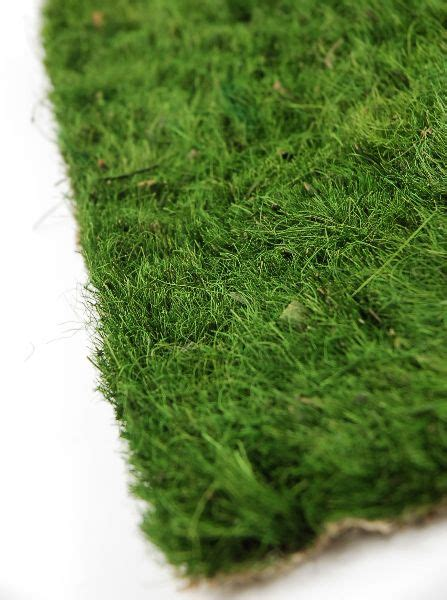 Display Grass Mat - grass mat grasses display and craft fair displays