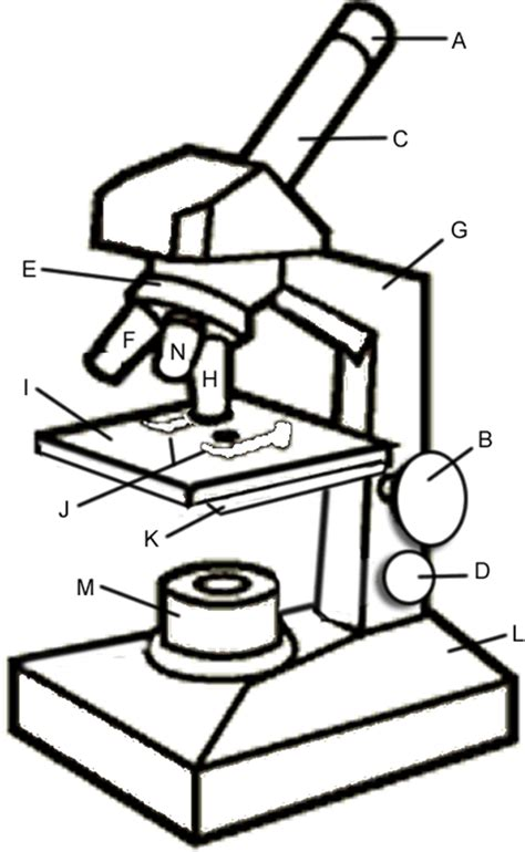 color the microscope parts microscope coloring