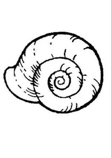 shell coloring pages shells coloring pages coloring home
