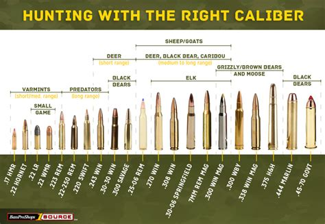 use this rifle caliber chart to the right ammo for