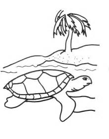 sea turtle coloring page free printable sea turtle coloring pages for