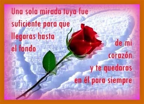 imagenes con frases de amor con flores imagenes de amor con ramos de flores para facebook