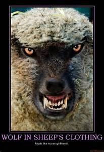 in sheep s clothing all about covert narcissists books narcissistic rage wolf in sheeps clothing or ex