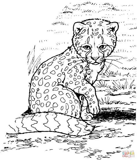 coloring pages of cute animals hard ausmalbild gepardenbaby ausmalbilder kostenlos zum