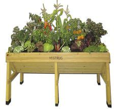Vegetable Trug Planter by 1000 Images About Trug Garden Ideas On Patio