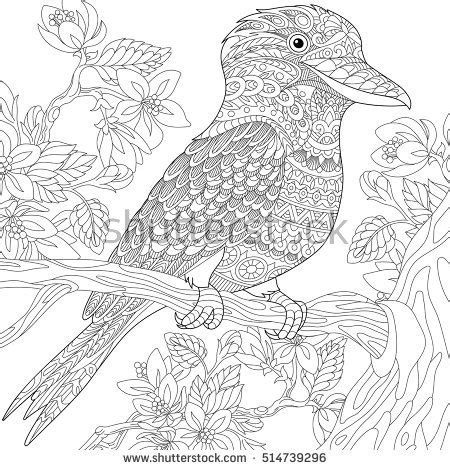 anti stress colouring book australia stylized australian kookaburra bird and cherry blossoming