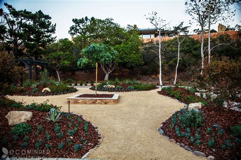 landscaping san diego drought tolerant landscaping ideas from san diego