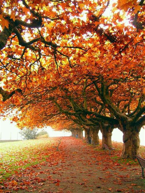 amazing nature pictures 9250 the wondrous pics pictures of most beautiful nature impremedia net