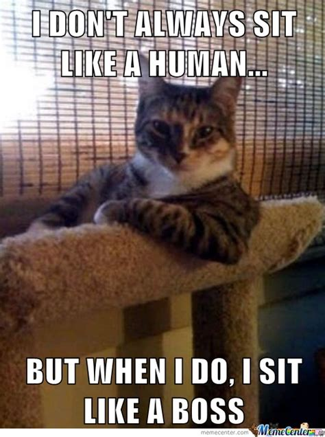Funny Human Memes - human cat by daleturcot meme center