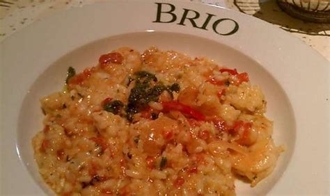 brio restaurant recipes best 25 brio tuscan grille ideas on pinterest brio