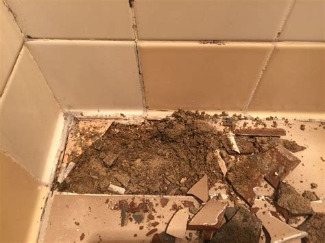 Epoxy Grout Shower Floor by 17 Best Images About Tile And Grout Repairs On
