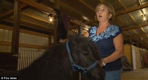 animal sxs and woman man raped multiple miniature horses and killed the barn