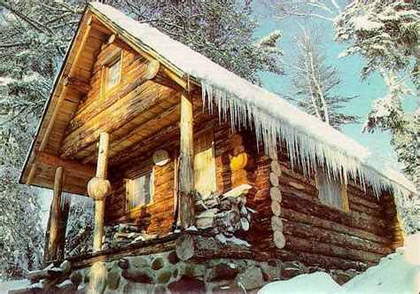 i want to build a house build a small log cabin 1