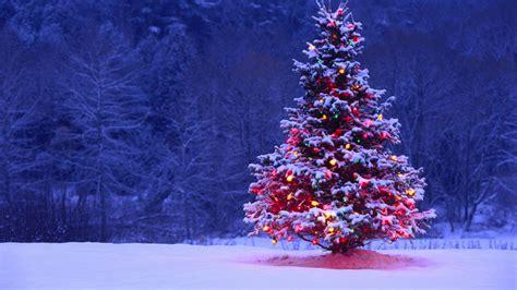 fondos de pantalla de 225 rboles de navidad 225 rboles navide 241 os