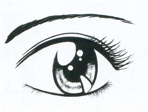 imagenes de ojos con orzuelos ojo en dibujo imagui