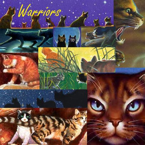 wallpaper cat book warrior cats book series images warriors 1 wallpaper and