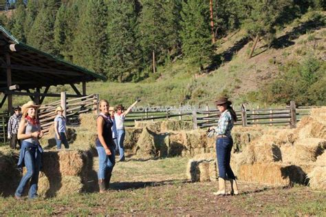 how to a working for cattle working cattle guest ranch in washington state workaway info