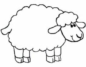 sheep template for preschool introducing sheep to kindergarten coloring page
