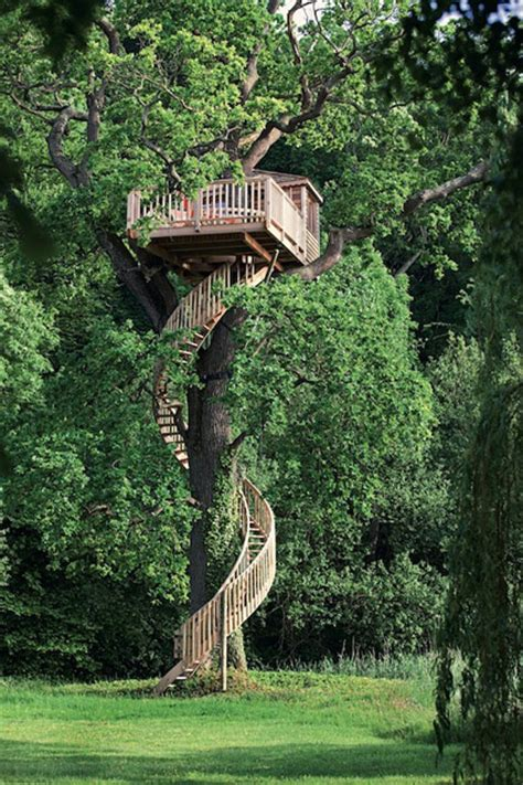 building a tree house everything you need to know baumhaus beispiele aus aller welt 1 tiny houses