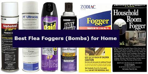 flea bomb reviews 6 best flea fogger bombs to kill