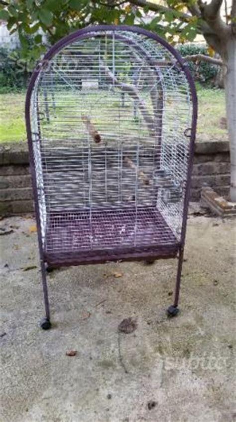 gabbia per ara gabbia x pappagallo ara comune nascosto posot class