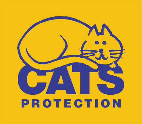 Cat Protector by Cats Protection Brighton The Tale Fair