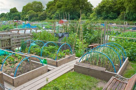 Large Backyard Vegetable Garden Home Design With DIY Wood