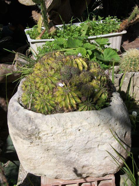vasi di pietra vasi di pietra antica la giara