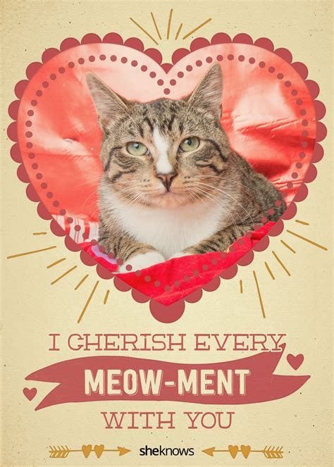 cat valentines 12 cat s day cards that will make you aww
