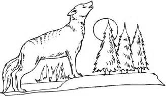 coyote coloring page free printable coyote coloring pages for